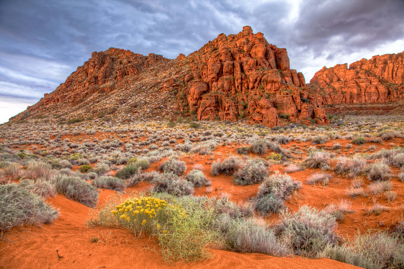 Snow Canyon State Park near St. George, Utah
