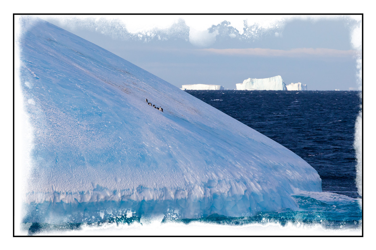 This dome-shaped iceberg had a few lonely penguins sitting on it. You wonder how they ever managed to get up on this large chunk of ice.