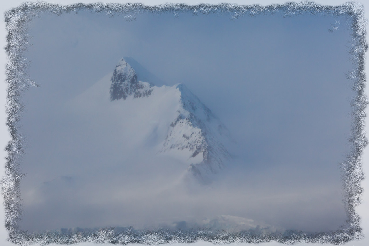 Shrouded in fog we spotted land on the Antarctic Peninsula.