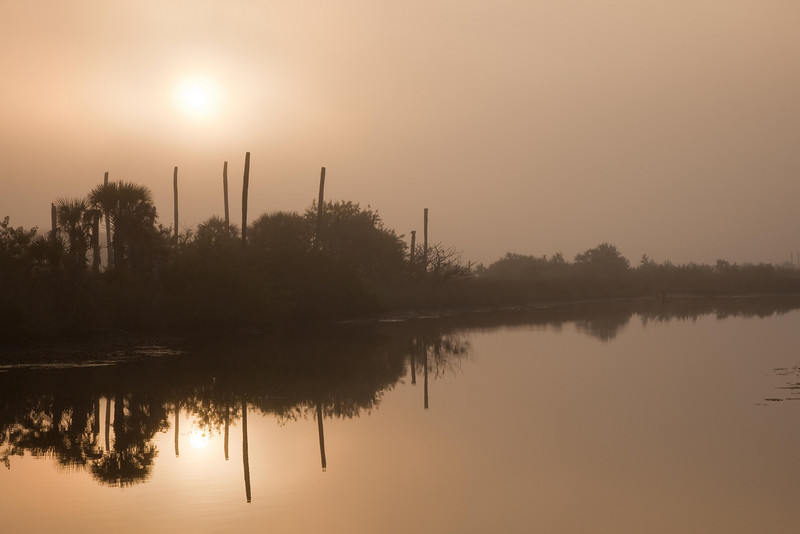 Enchantment of fog on the Intracoastal