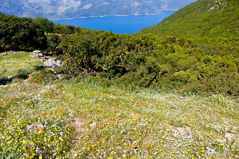 View from Ithaka mountaintop