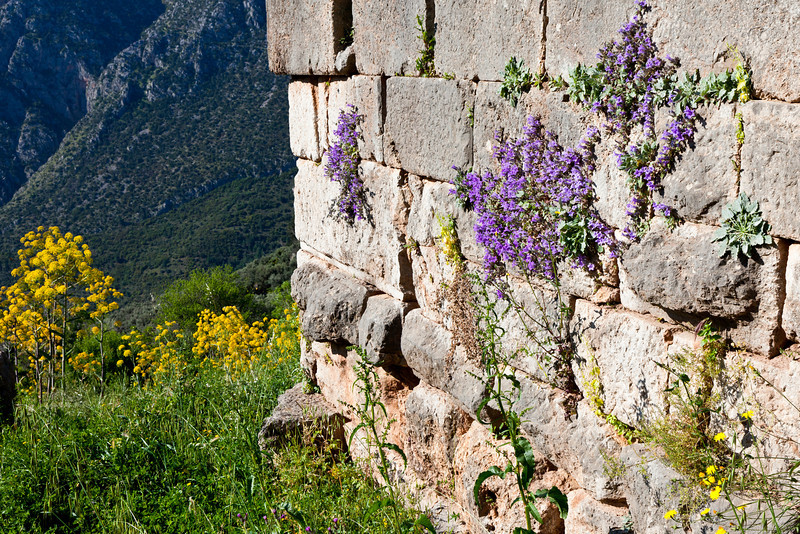 Colorful wall at Delphi