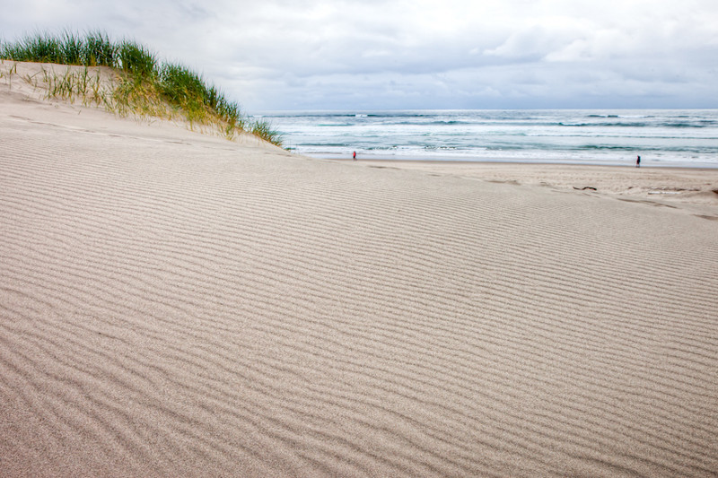 Wind-rippled sand dune, Oregon coast