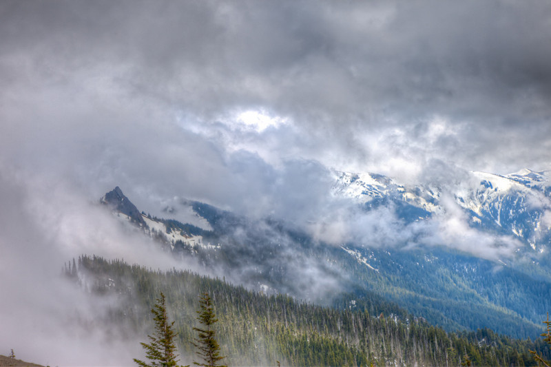 Breaking through the clouds on Hurricane Ridge, Olympia National Park