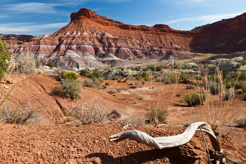 This is an area called Paria in southern Utah.