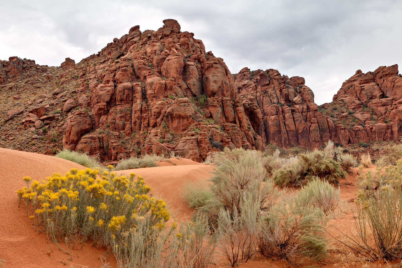 Snow Canyon State Park near St. George, UT