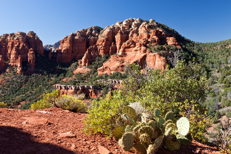 From Page we drove to Sedona. This photo is taken from Schnebly Hill road, a rough trek.