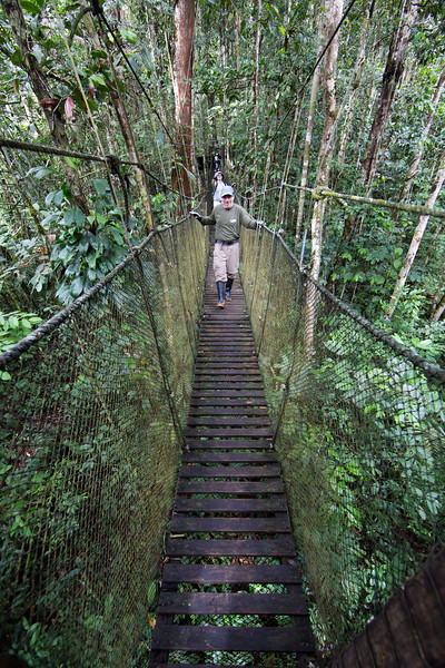 Friends Lew and Dave crossing one of a series of suspended bridges we bravely crossed in the jungle.