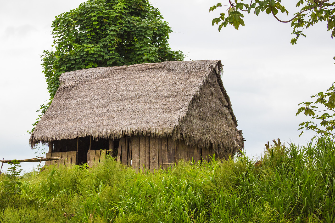 A typical thatched hut.