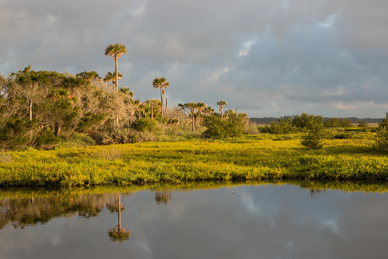 Wetlands, Highbridge Road, Ormond Beach