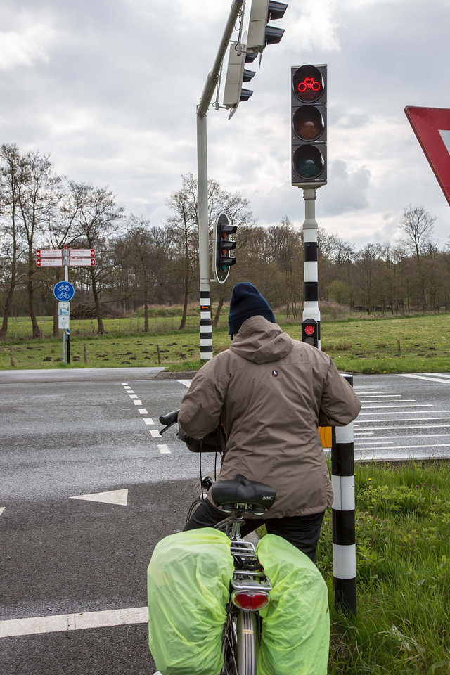 Most traffic signals also had signals specifically for bicycles.