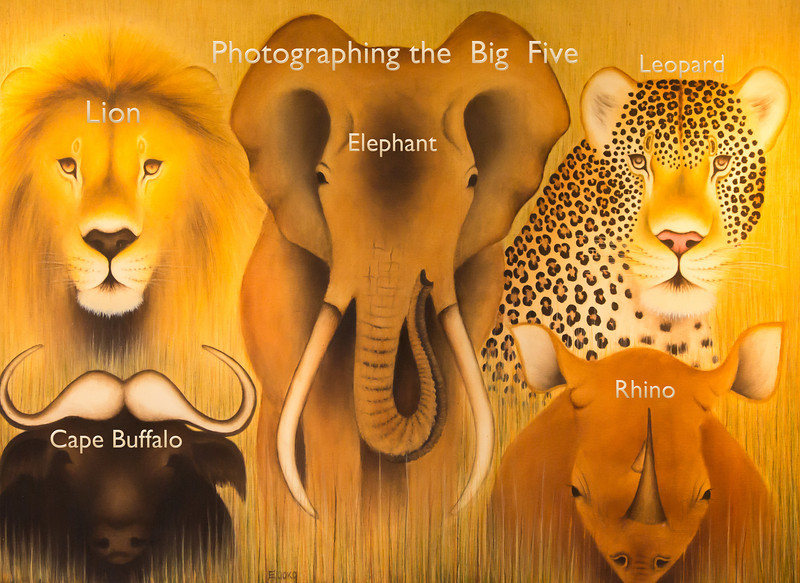 "Going to Africa to kill the ""big five"" used to be popular. Now it's a crime. We went to shoot the Big Five with our cameras and the next photos are examples of the Big Five."
