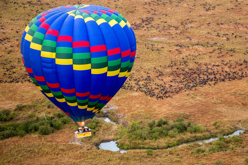 Another colorful balloon with the passengers watching the wildebeests below.