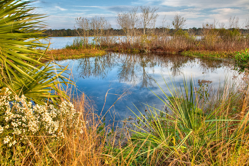 Lake Woodruff Wildlife Refuge, Deland, Florida