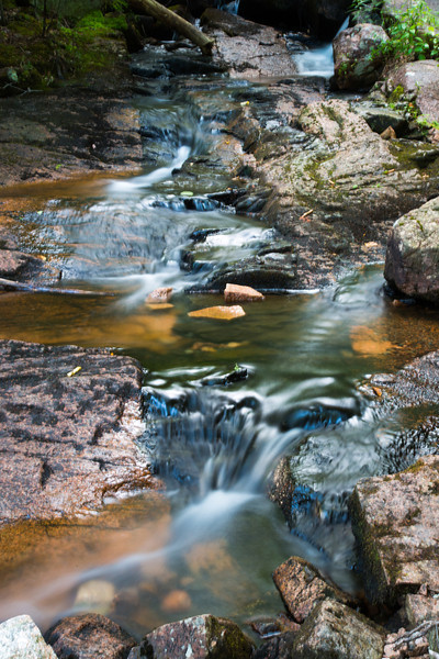 Meandering stream in Acadia National Park