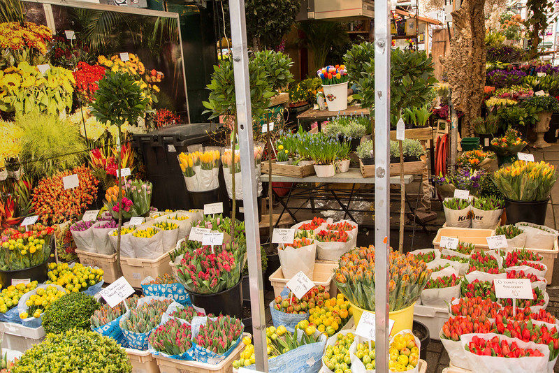 Tulips being sold in a local market.