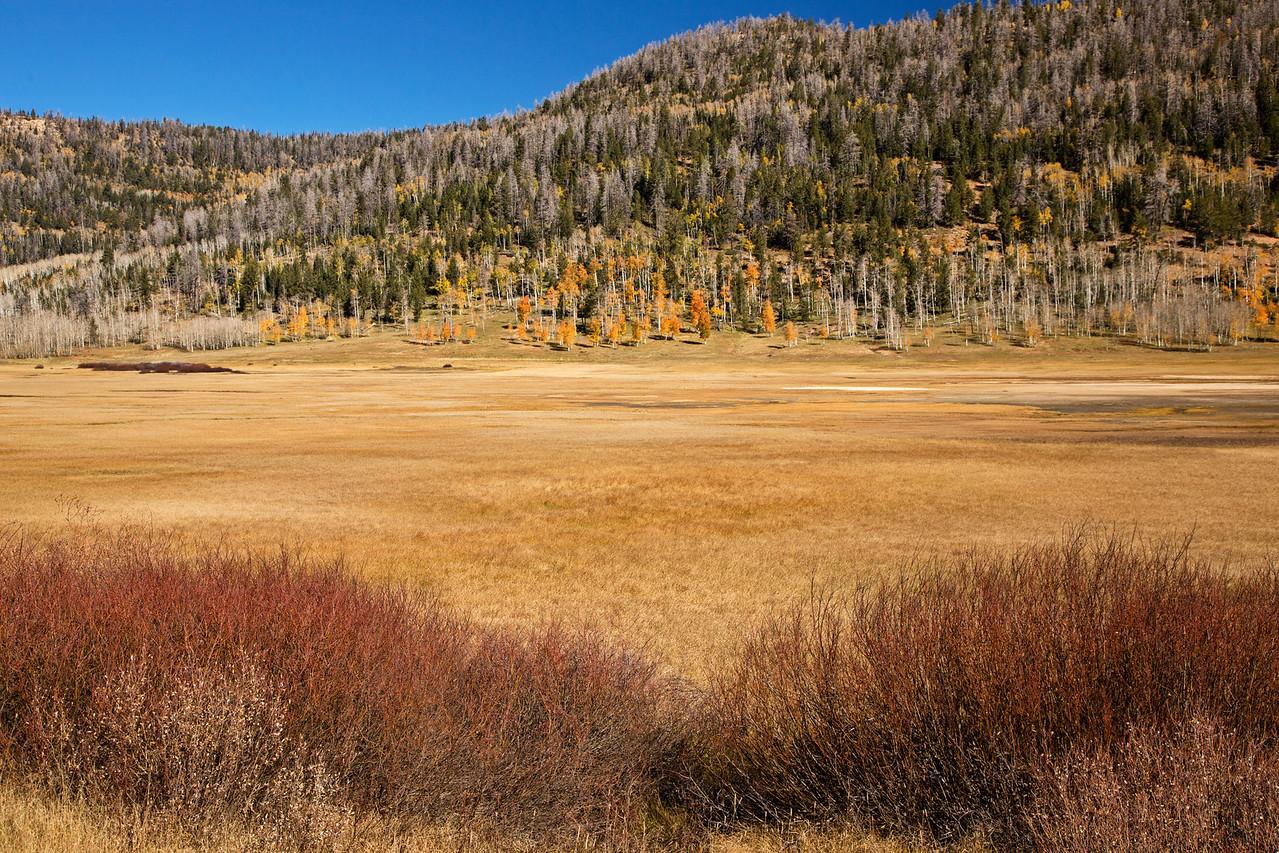 More backroad scenery in southern Utah