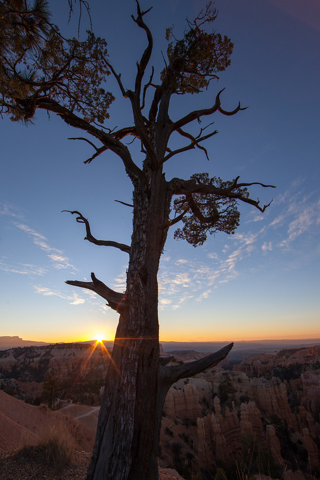 Dawn at Bryce. Temperature is 24 degrees