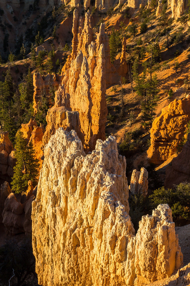 More hoodoos lit with warm morning light