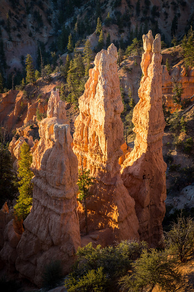 Morning sun lighting up Bryce hoodoos
