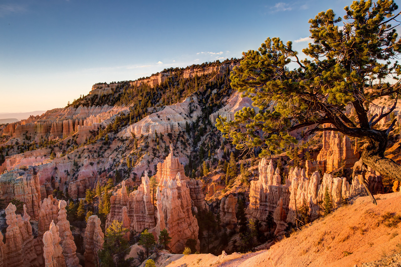Early morning view of the area called Fairyland in Bryce Canyon National Park