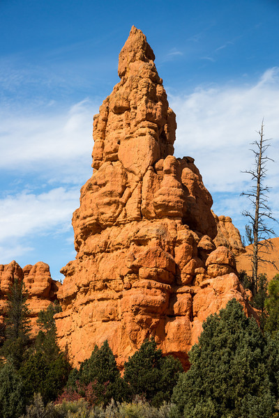 Red rocks near Bryce Canyon National Park