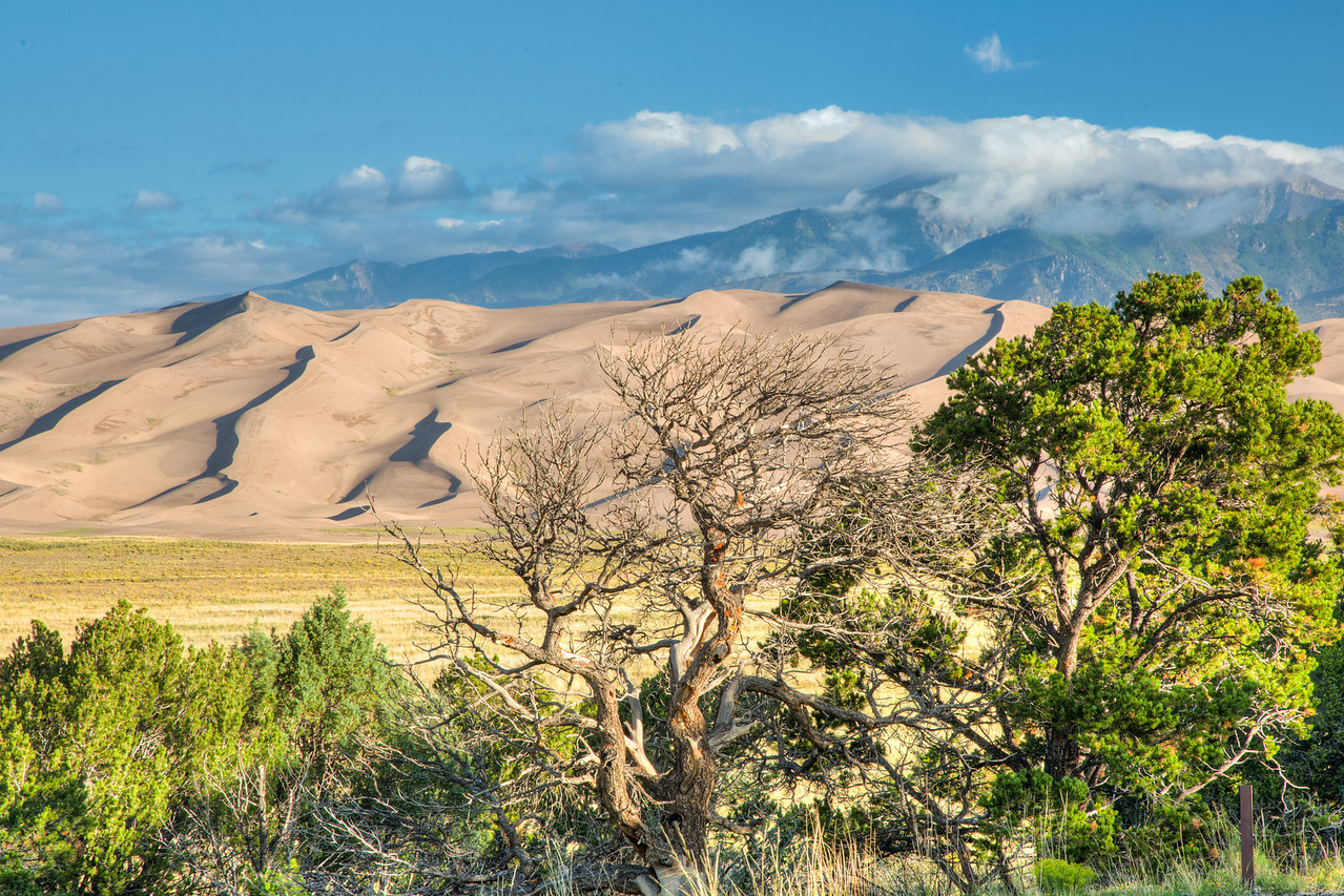 The dunes nestled against the rugged Sangre de Cristo Mountains.