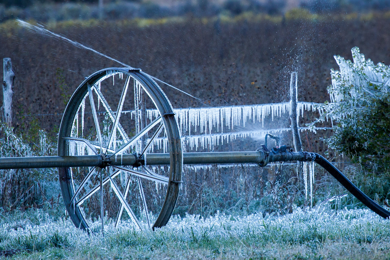 It was unexpectedly cold in the high country. The farmers sprinklers were still running forming ice cycles on whatever they hit.