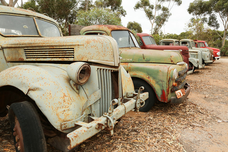 Leaving the Coorong to see more of the River Murray, we came across these old trucks.