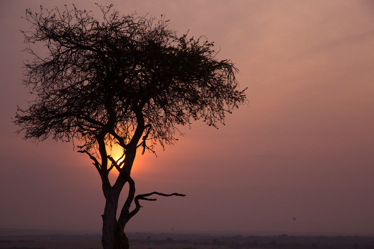 And the setting sun on the Masai Mara.