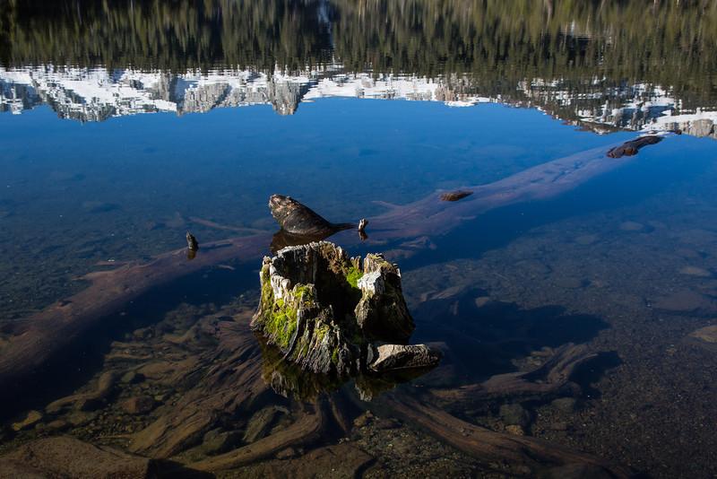 Mono Lake-51
