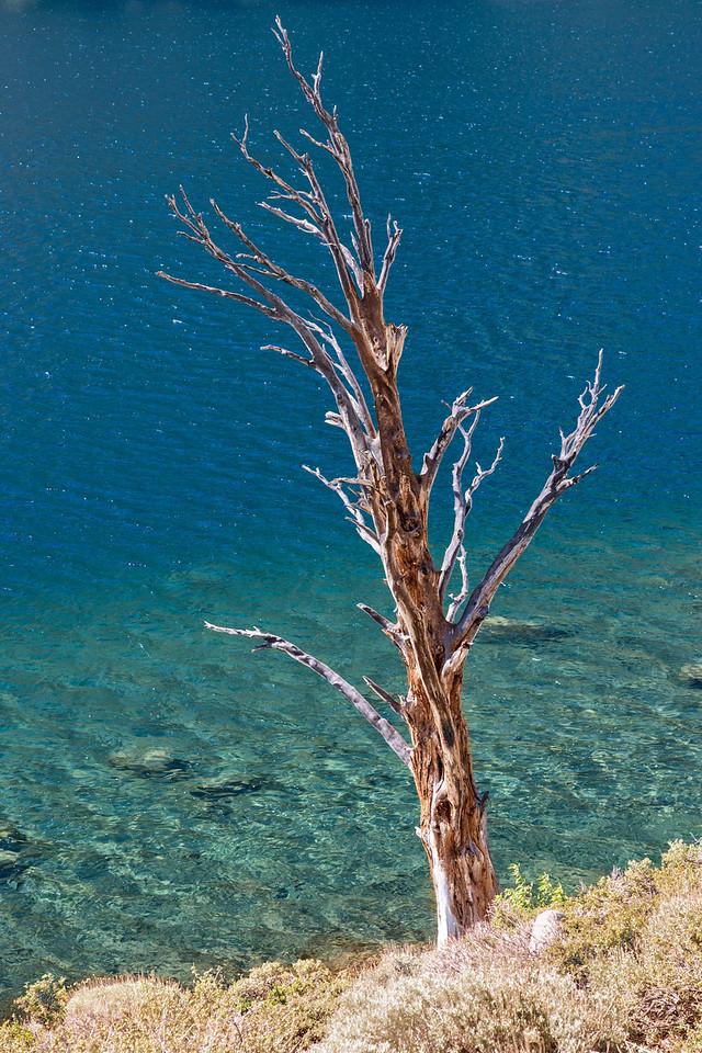 Mono Lake-37
