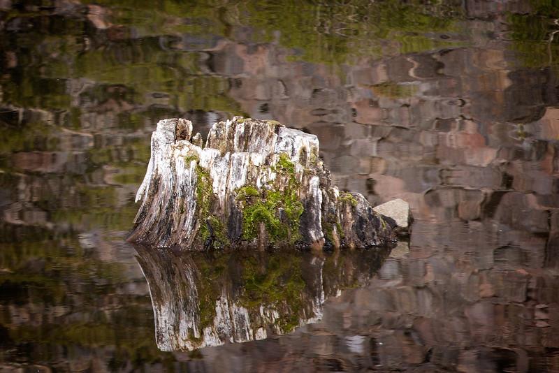 Mono Lake-50