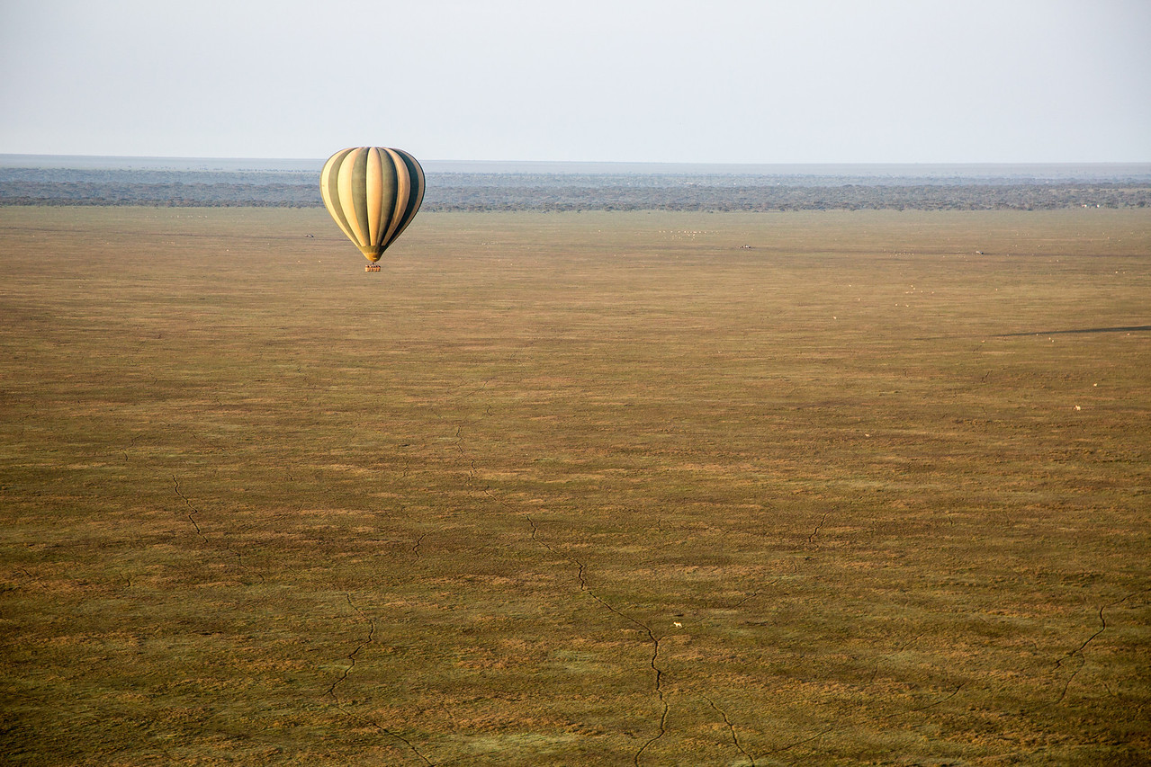 We went hot air ballooning over the Serengeti Plains. You see our sister balloon in the distance.