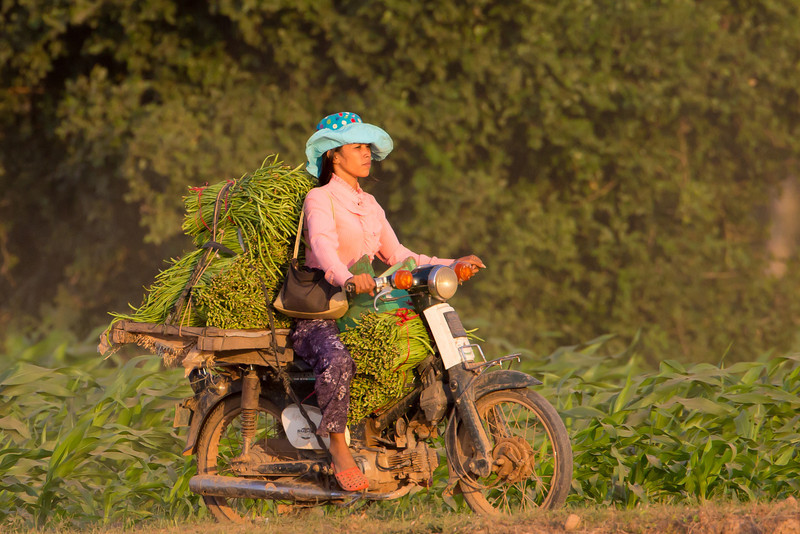 Taking the crop to market in a rather stylish hat