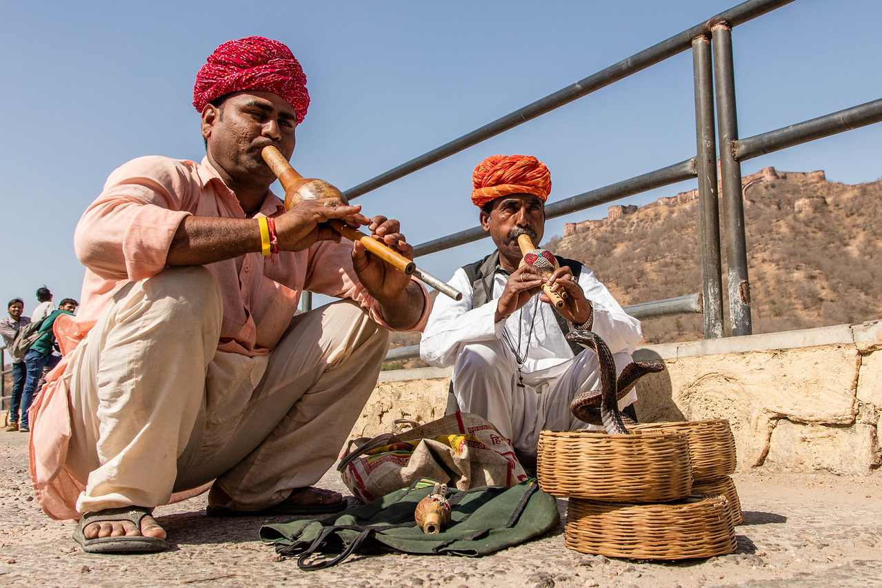 Snake charmers working for tips on the streets of Jaipur.
