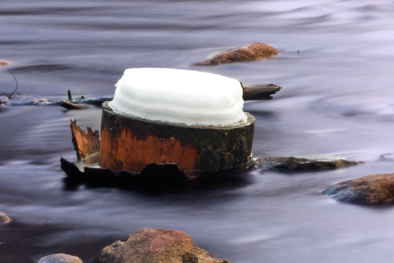 Snow-covered stump in Merced River
