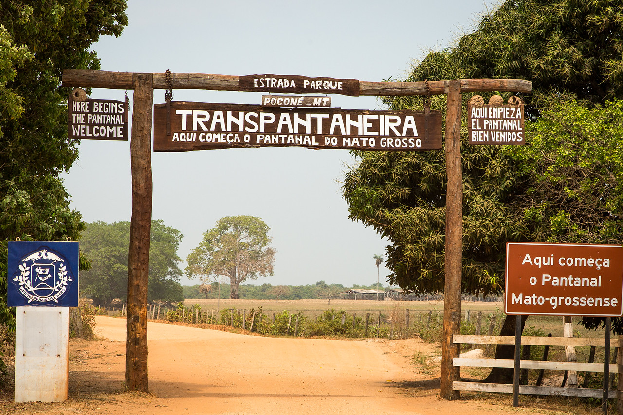 We traveled into the Pantanal, a vast wetlands region, on the Transpantaheira Road.