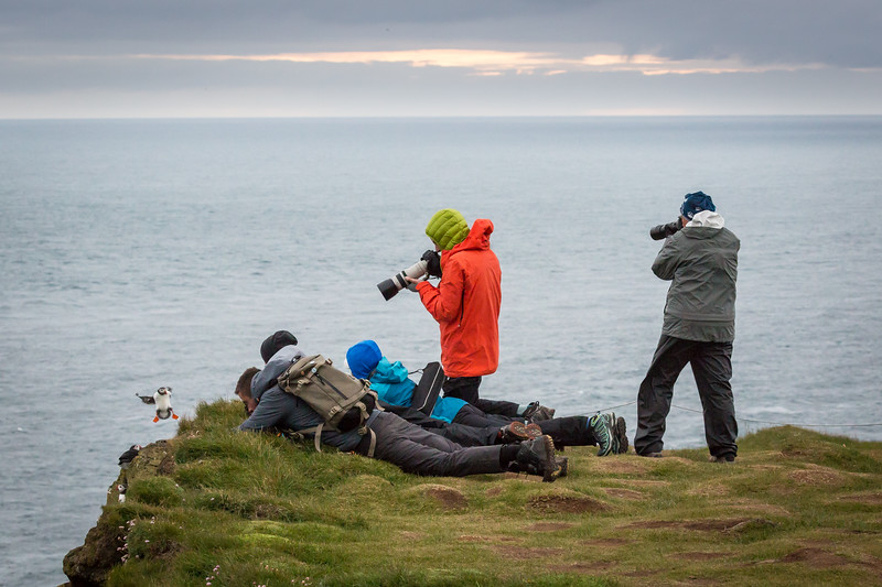Julie on the right capturing a puffin in flight