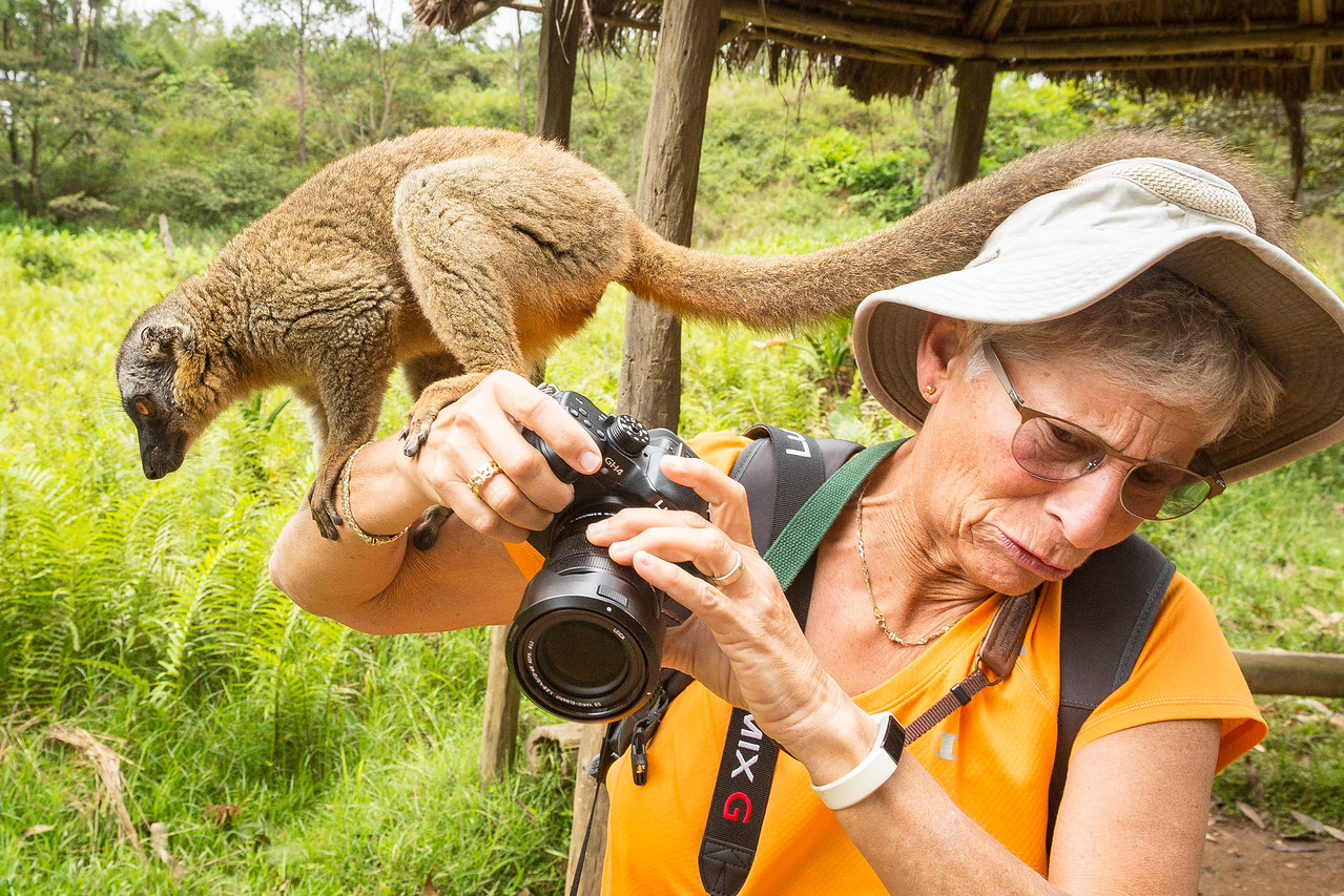 A major reason for going to Madagascar was to photograph lemurs. Julie just didn't expect to get so close to them.