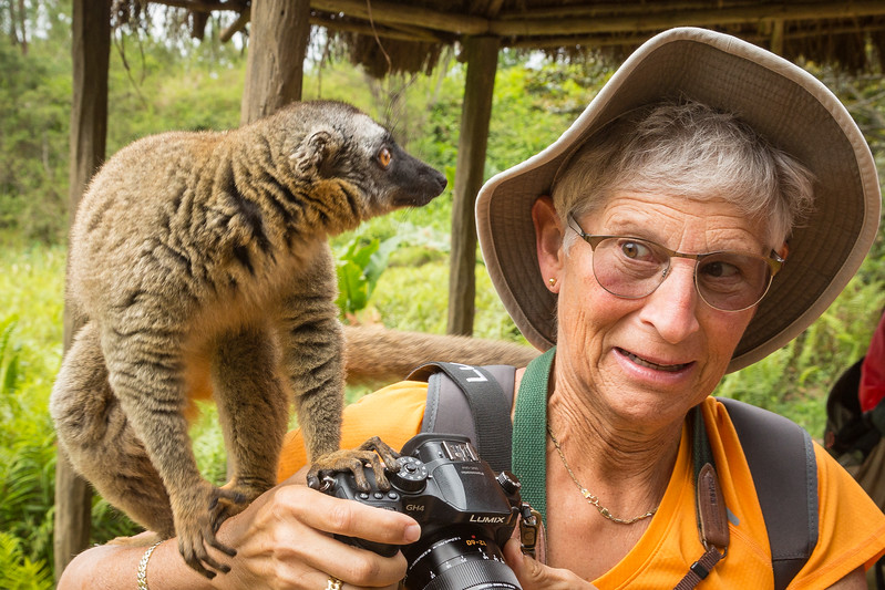 From the initial surprise of having a lemur jump on her, Julie shifted to a look of curiosity. Or is that fear!