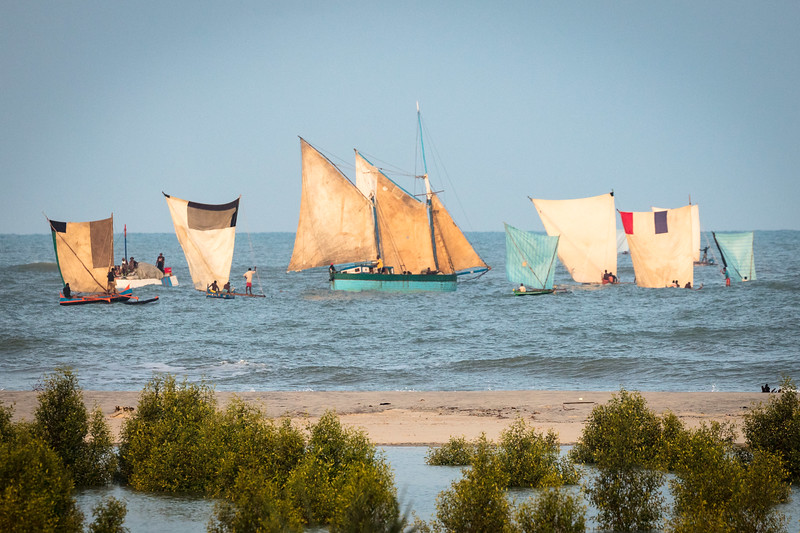 A fleet of fishing boats with their patched together sails and crafts.