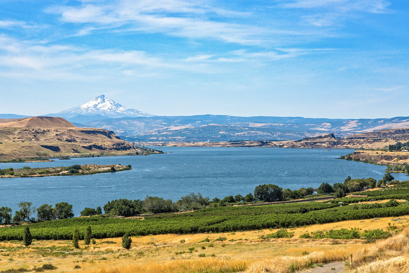 An overview of the Columbia River Gorge with Mt. Hood in the background