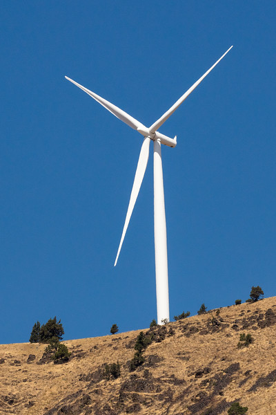 Wind turbines populated the bluffs above the Columbia River