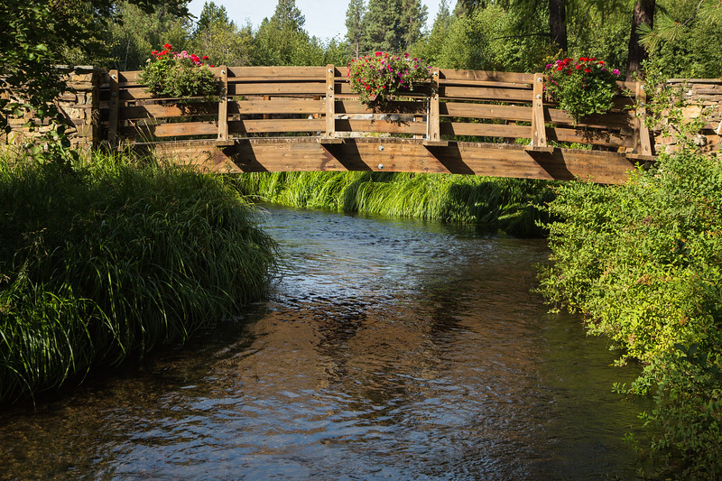 Walking bridge in Black Butte