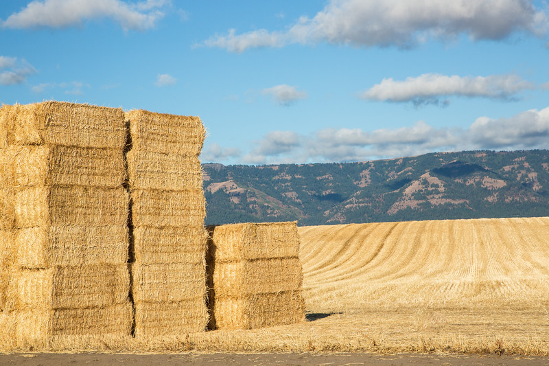 Hay harvest along the Columbia River Gorge Scenic Byway