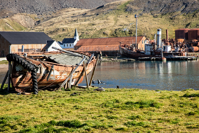 The whaling station was in operation for nearly 50 years, but now is a rusting junkyard.
