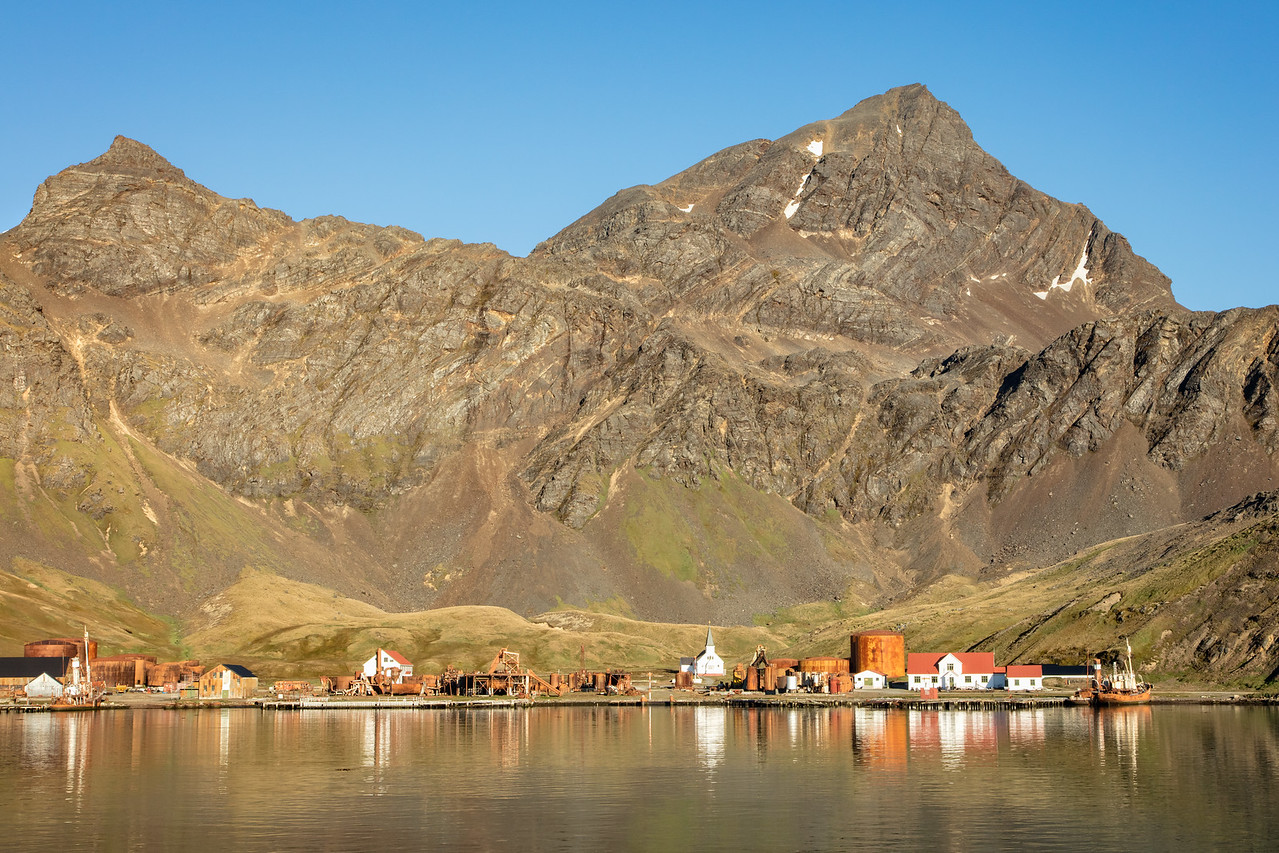 Grytviken was the site where 53,761  whales were slaughtered for their oil and meat.