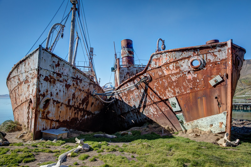 More rusting ships in the harbor at Grytviken. This place was made famous by Earnest Shackleton making his way here from Antarctica in a row boat to get help to rescue the men he left behind.