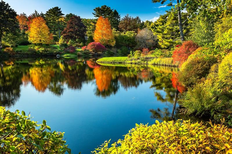 Asticou Azalea Gardens near Northeast Harbor
